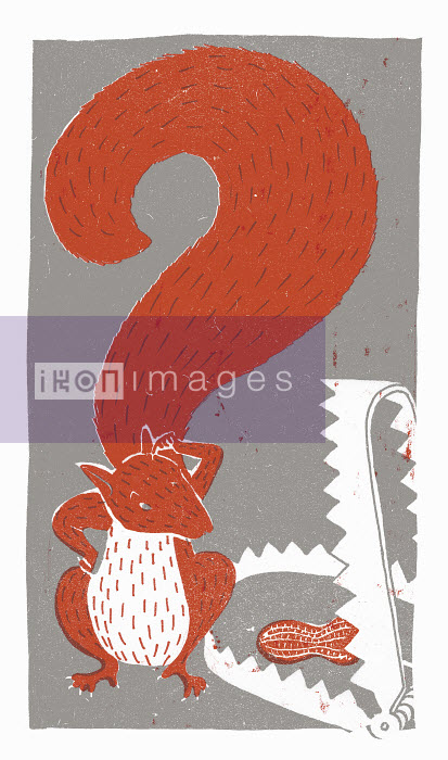 Squirrel with question mark tail looking at peanut in bear trap - Squirrel with question mark tail looking at peanut in bear trap - Sophie Casson