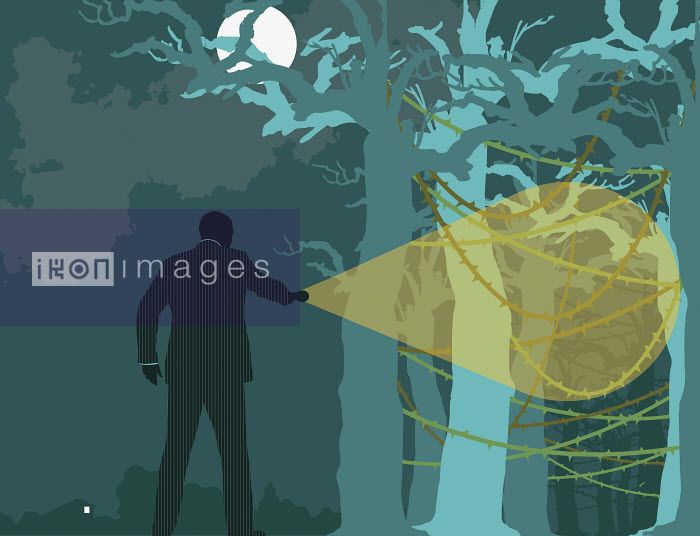 Businessman searching forest at night - Businessman searching forest at night - Neil Webb
