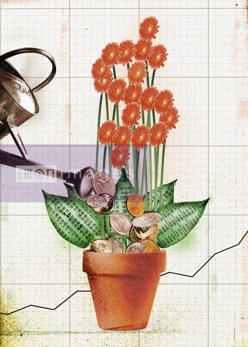 Coins and money flower - Coins and money flower - Neil Leslie