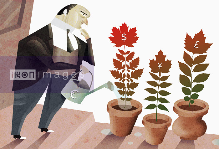 Man tending potted plants - Man tending potted plants - Pablo Blasberg