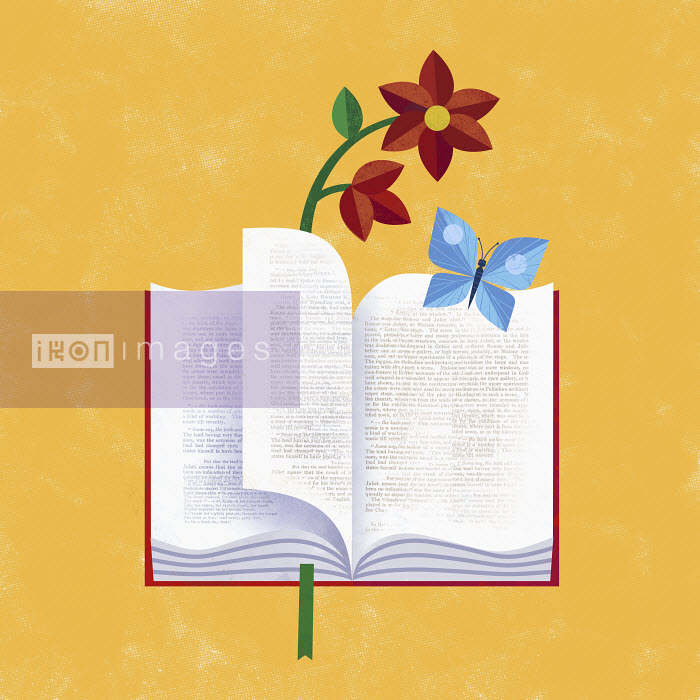 Book with butterfly and flower - Gregory Baldwin