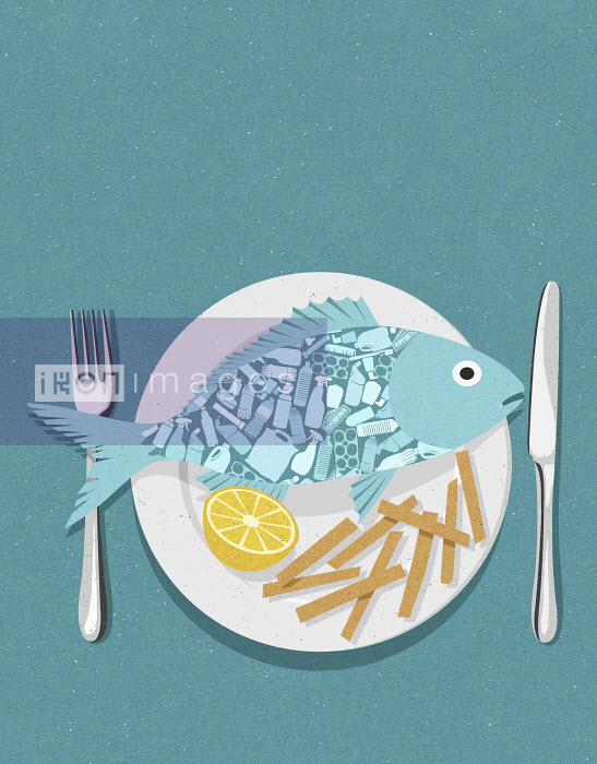 John Holcroft - Fish full of plastic on plate with chips