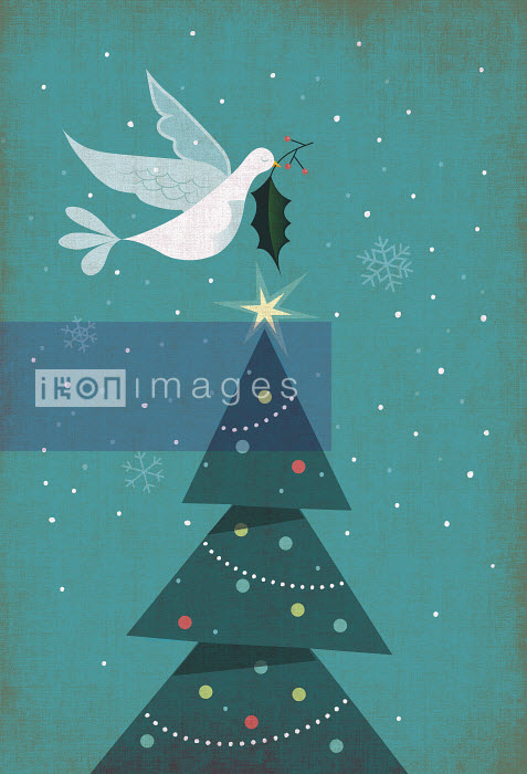 Rocco Baviera - Christmas card with Christmas tree, dove and holly