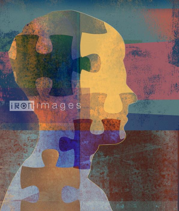 Jigsaw puzzle pieces over man's profile Roy Scott
