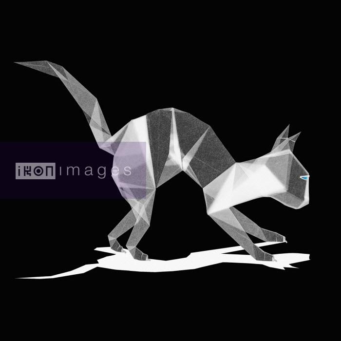 Alert cat made from translucent paper - Bertrand Lepautremat
