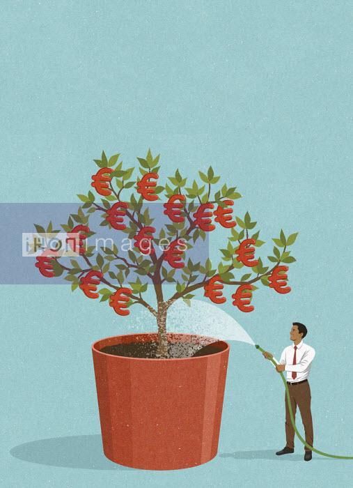 Happy businessman watering euro money tree - John Holcroft