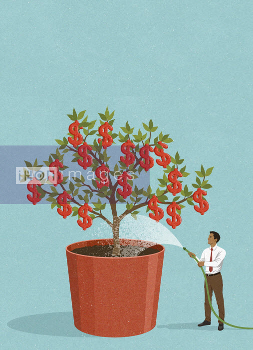 John Holcroft - Happy businessman watering dollar money tree