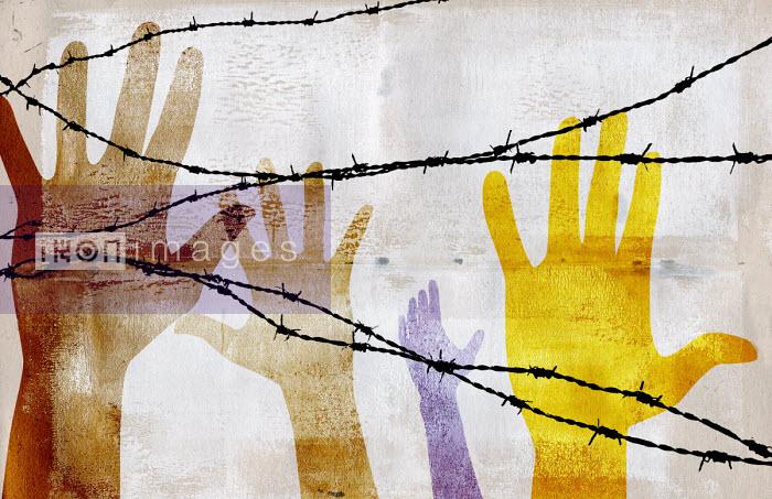 Hands reaching up behind barbed wire - Roy Scott