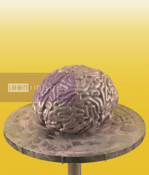 Clay brain on potter's wheel - Oliver Burston