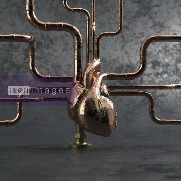 Metal pipework connected to human heart Oliver Burston