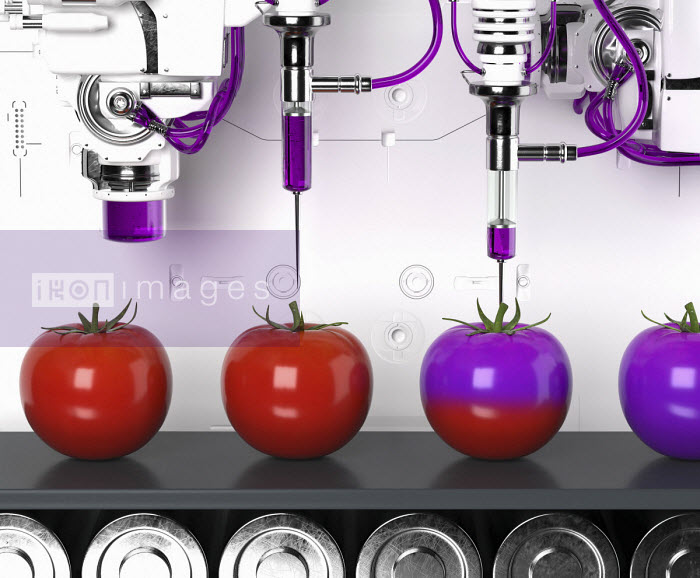 Oliver Burston - Automated production line producing genetically modified tomatoes