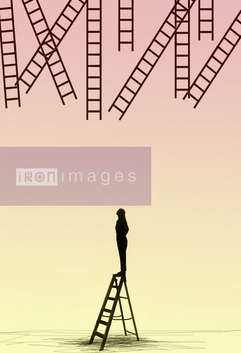 Woman looking up at ladders out of reach Gary Waters