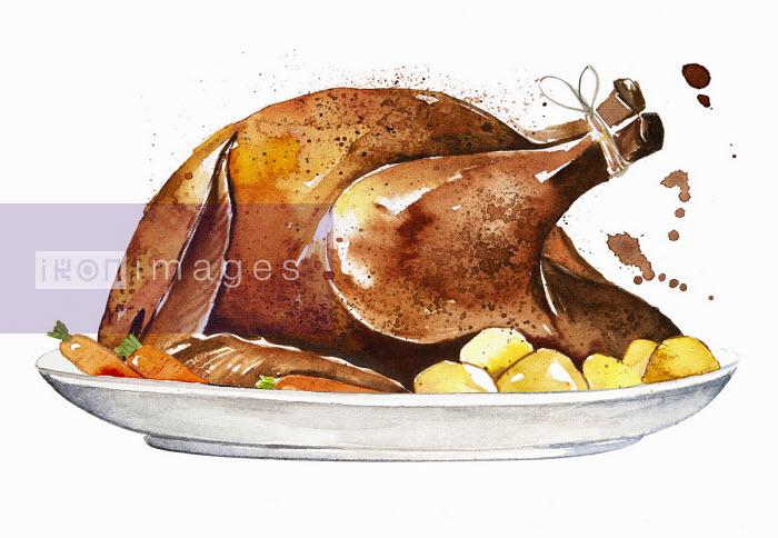 Roast chicken on serving plate - Enya Todd