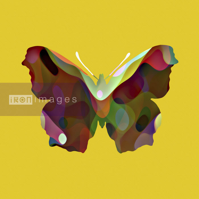 Studio Parris Wakefield - Abstract pattern butterfly