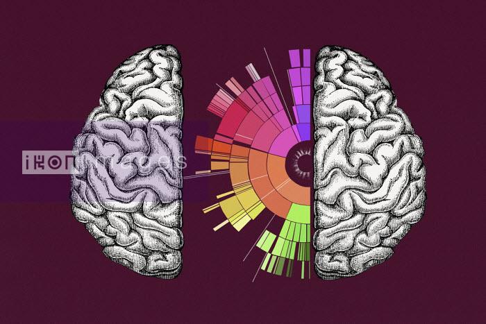 Valero Doval - Multi coloured spectrum inside of brain