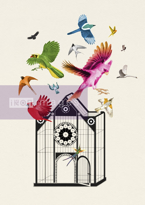 Lots of brightly coloured birds escaping from ornate birdcage - Valero Doval