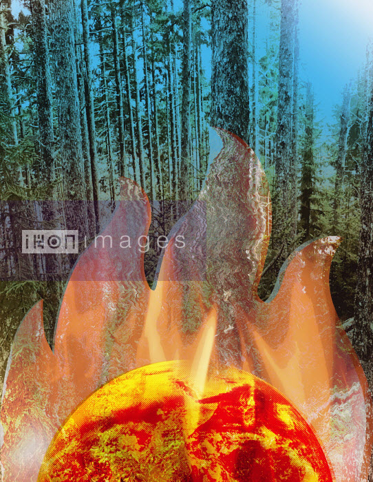 Roy Scott - Global warming and forest fires