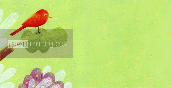 Red bird on oak leaf - Tommaso D'Incalci