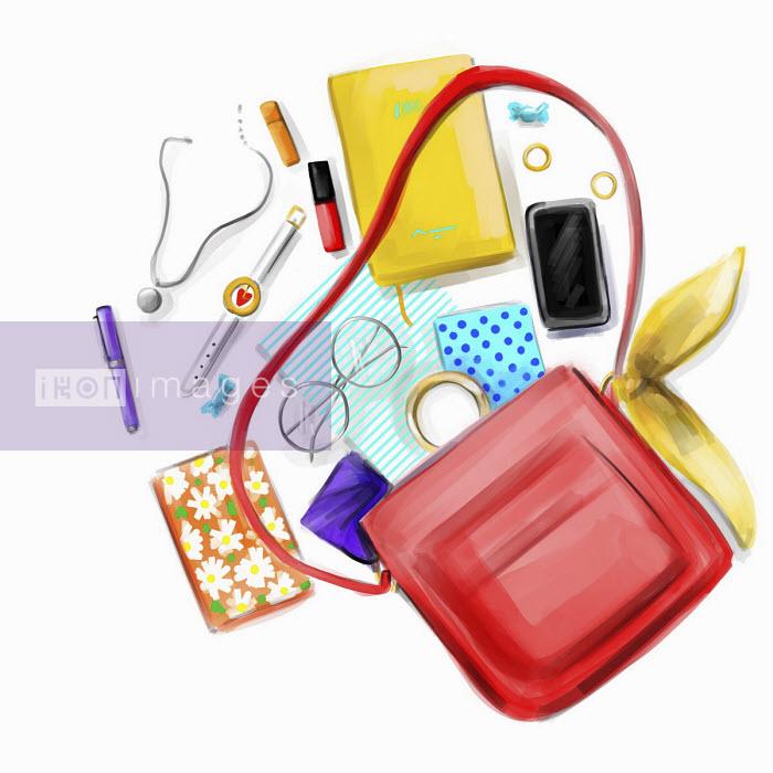 Contents of handbag - Stephanie McKay