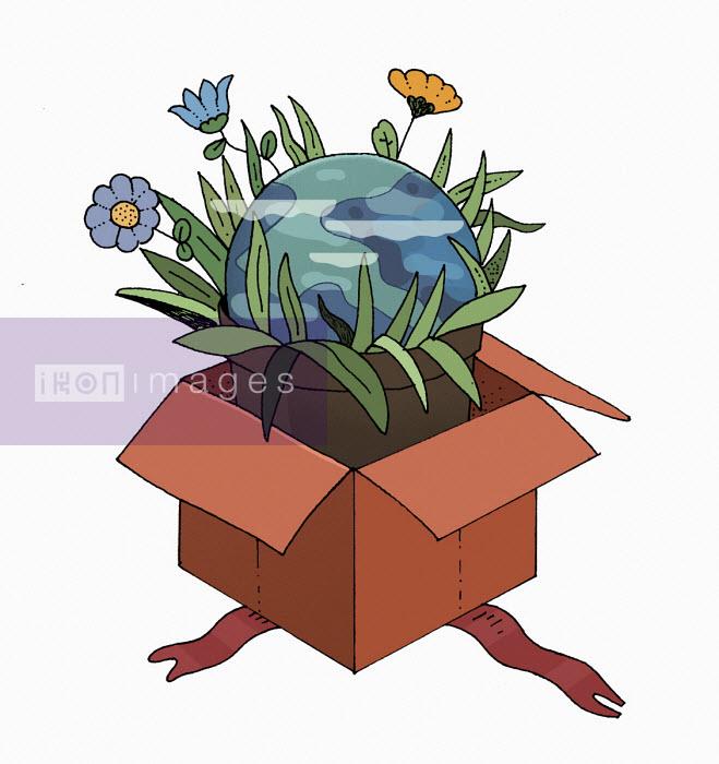 Maxim Usik - Planet earth pot plant in gift box