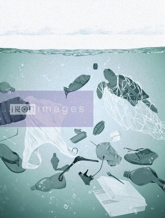 Hendrik Dahl - Fish and turtle swimming through plastic rubbish in the ocean