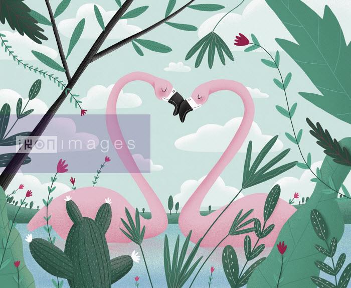Flamingos forming love heart - Lorenza Cotellessa