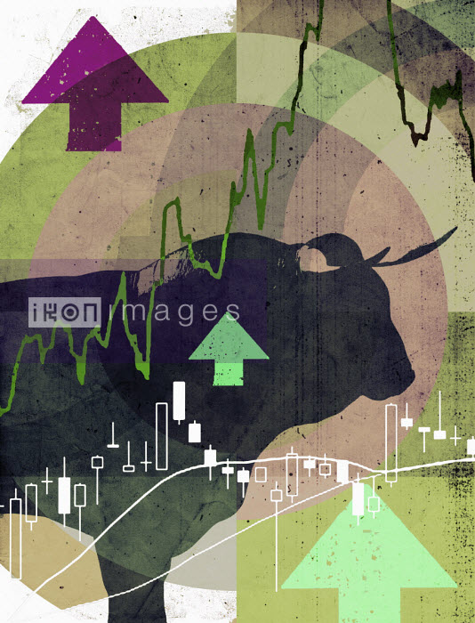 Lee Woodgate - Bull market