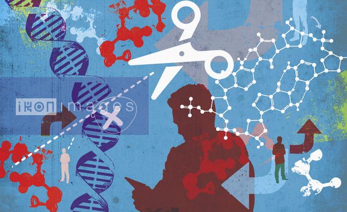 Scissors cutting DNA helix - Lee Woodgate