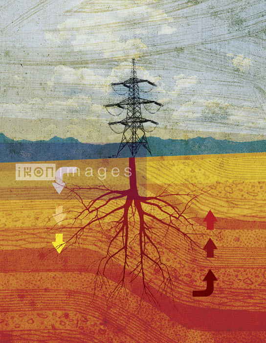Lee Woodgate - Electricity pylon with tree roots
