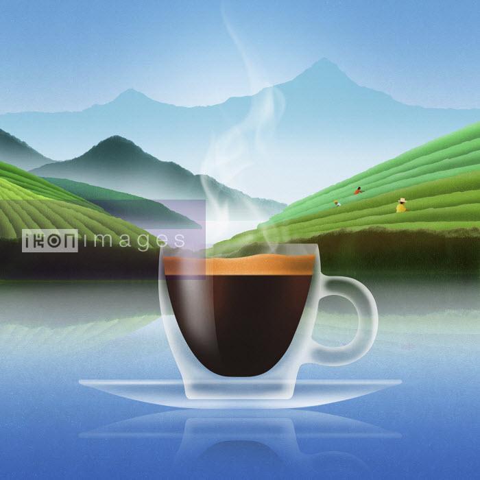 Glass of espresso coffee in plantation landscape - Nick Purser