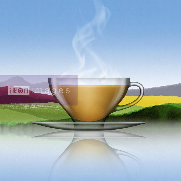 Glass of tea with milk in summer landscape - Nick Purser