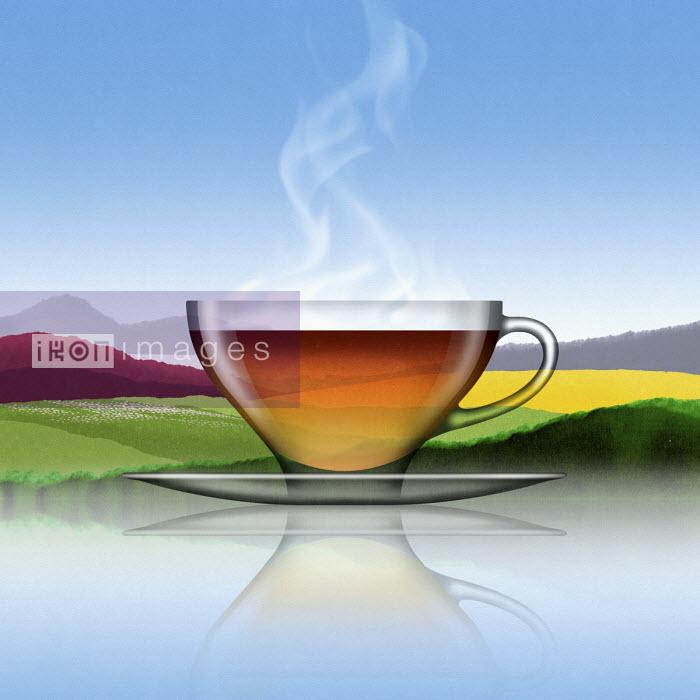 Glass of black tea in summer landscape - Nick Purser
