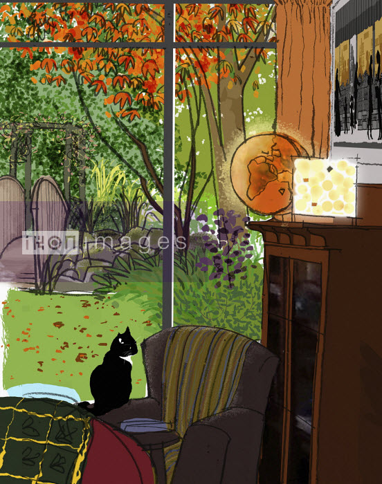 Cat sitting by window into beautiful garden - Jan Bowman