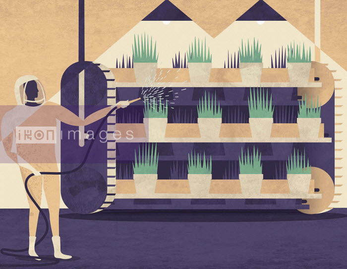 Man in hazard suit spraying rows of plants on shelves - Josh Patterson