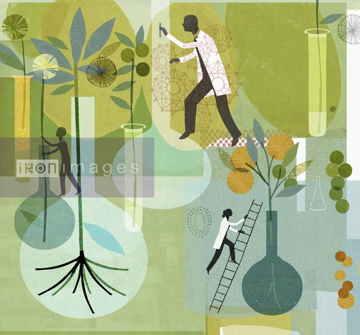 Scientists studying plants - Donna Grethen