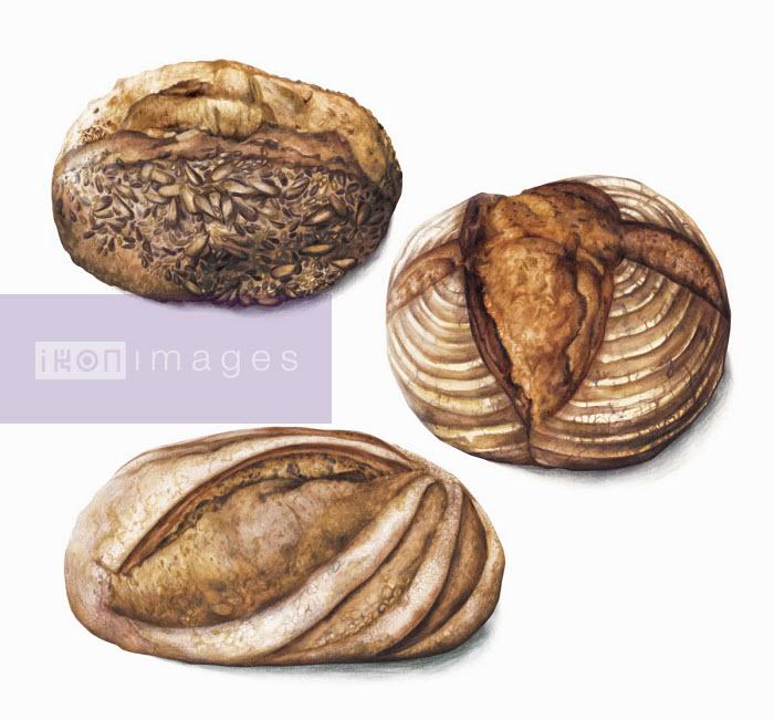 Three artisan loaves of bread - Amanda Dilworth
