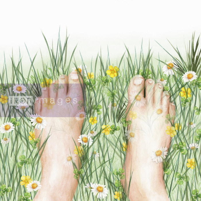 Close up of bare feet in wild meadow - Amanda Dilworth