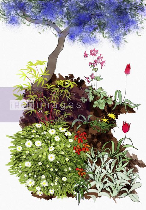 Spring flowers below lilac tree - Jan Bowman