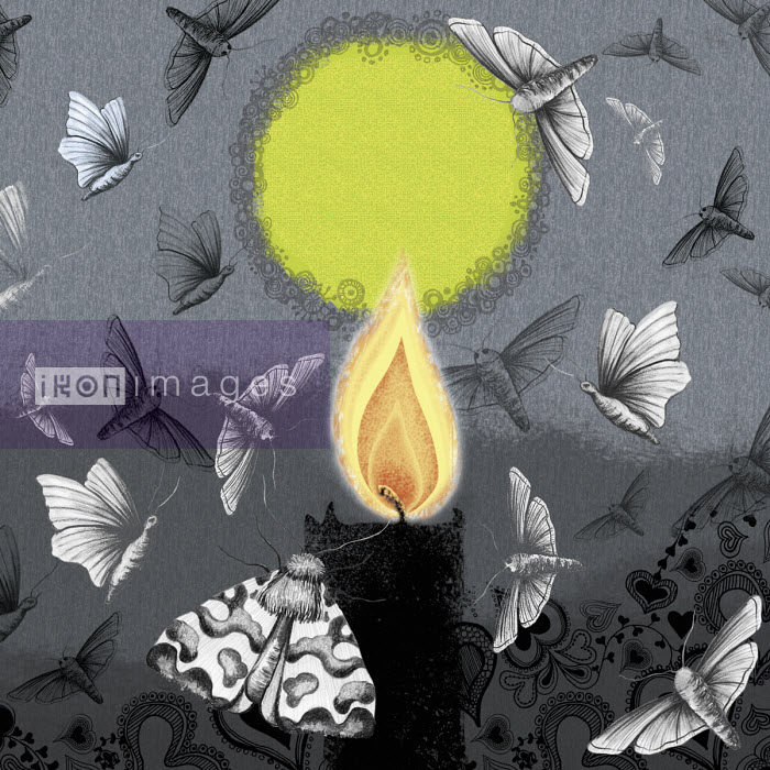 Moths attracted to candle flame - Amanda Dilworth