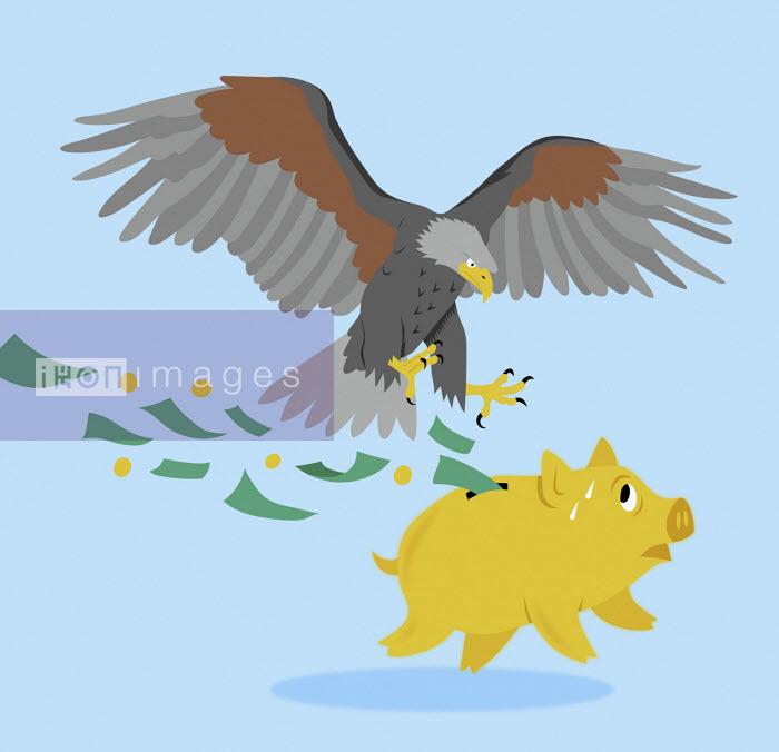 Bald eagle attacking piggy bank - Mitch Blunt