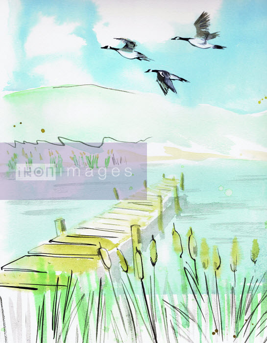Watercolour painting of geese flying over tranquil lake - Jacqueline Bissett