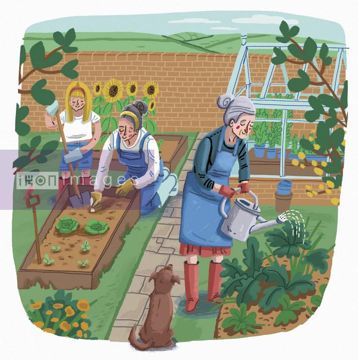 Three generations gardening together - Elly Walton