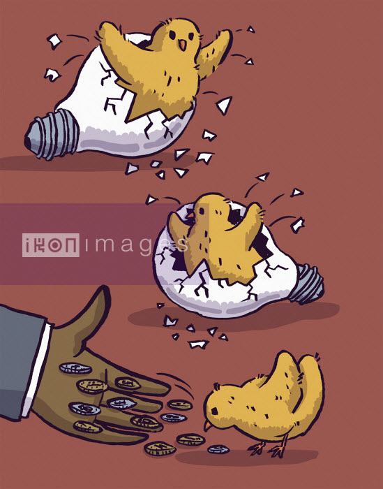 Chicks hatching from light bulbs and being fed pound coins - Dom McKenzie