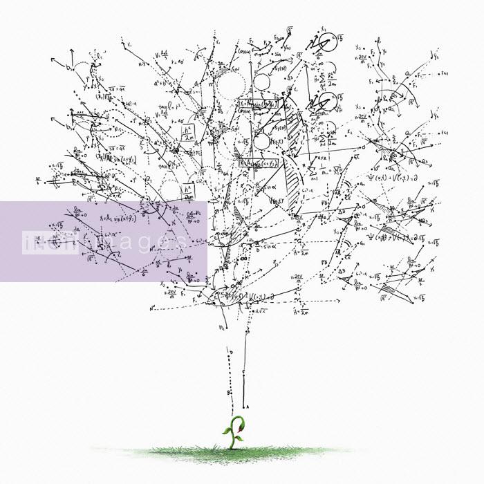 Mathematical calculations forming tree - Daniel Liévano