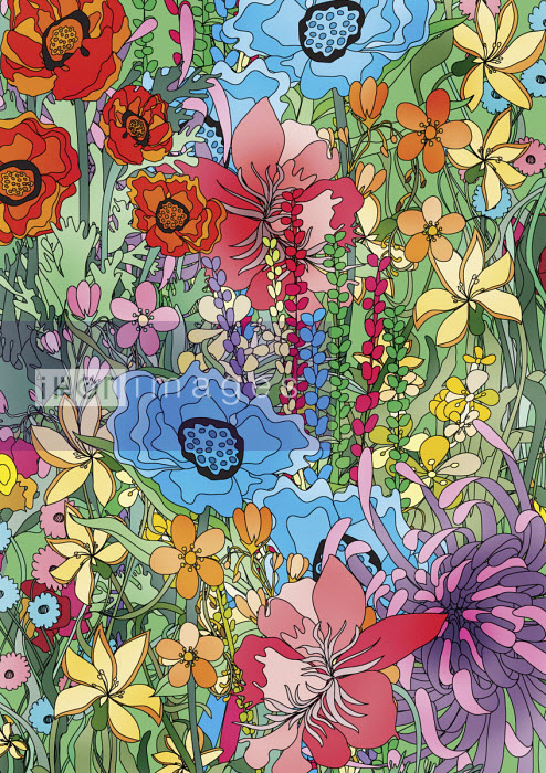 Profusion of bright flowers - ET