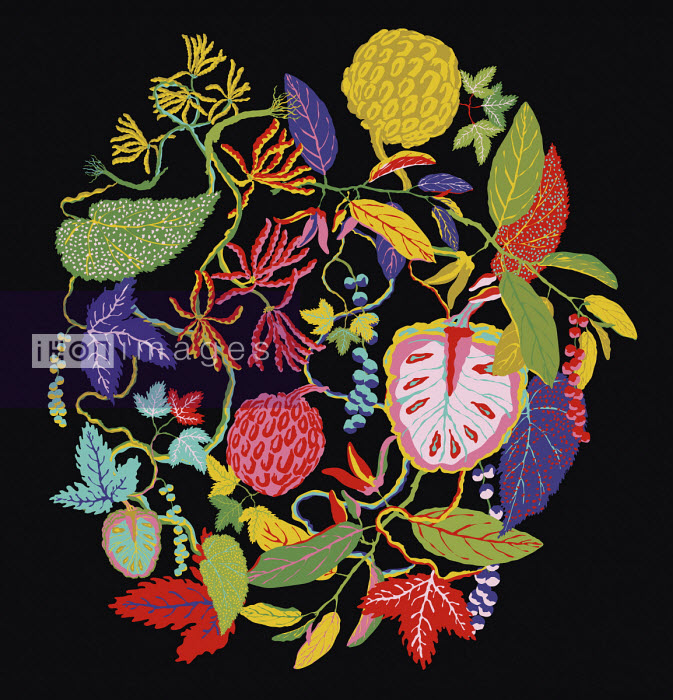 Brightly coloured leaves and fruit pattern - ET