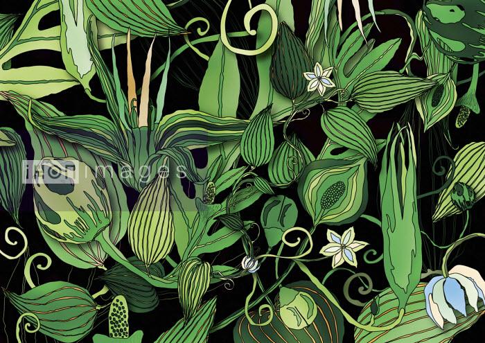 Lush green foliage pattern - ET