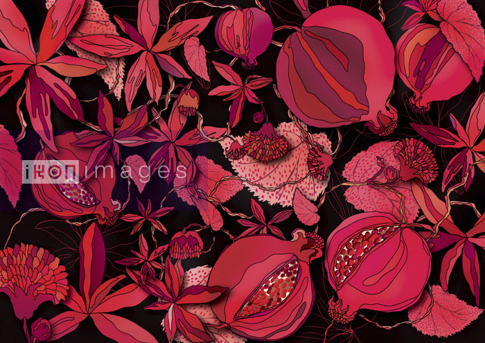 Red foliage and seed head pattern - ET