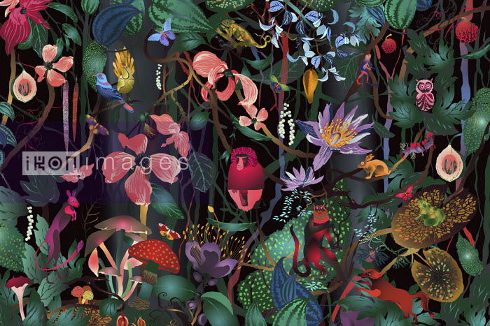 Lush forest full of plants and animals - ET