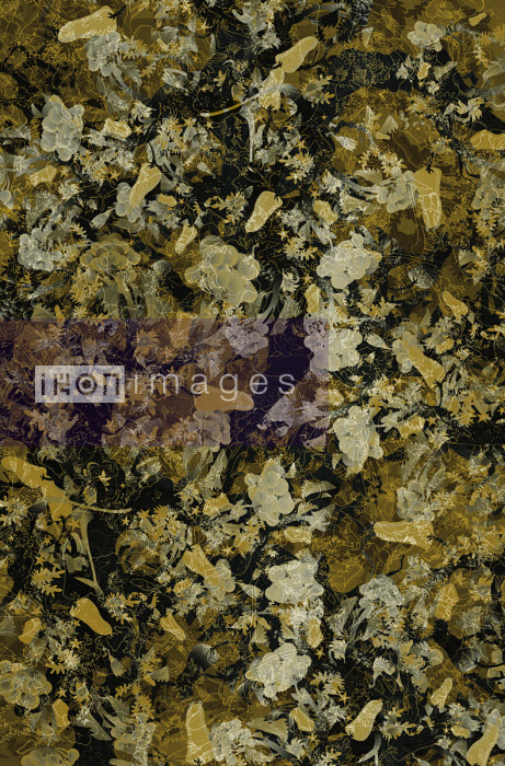 Abstract autumnal flower and foliage pattern - Philippe Intraligi